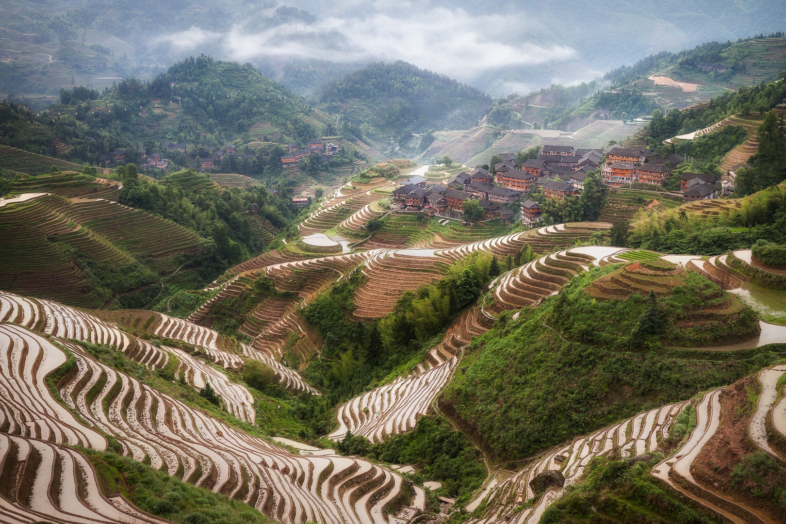 Rice Terraces 9836298